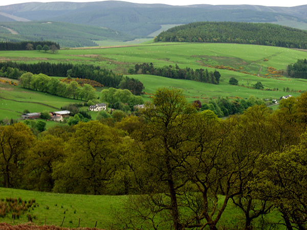 Lush, green countryside. They get a lot of rain. - click thumbnail image to view full size image.