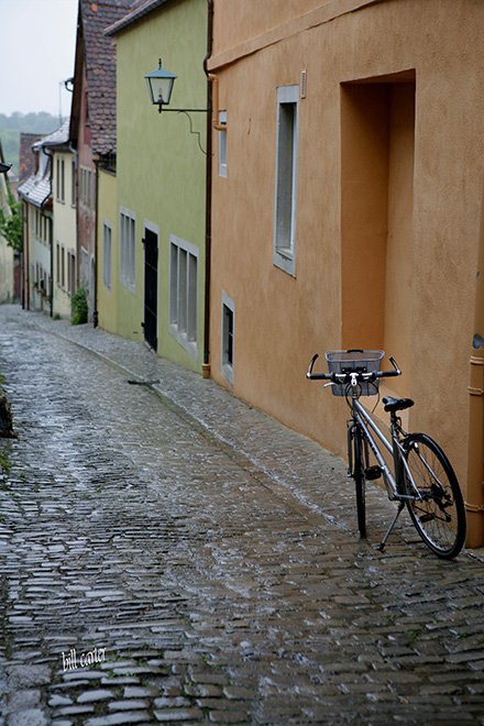 Bicycles, trains and walking are the most common modes of getting around  - click thumbnail image to view full size image.